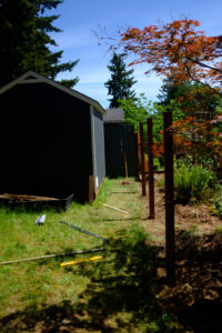 A bunch of posts into our fence building, all level and squared off