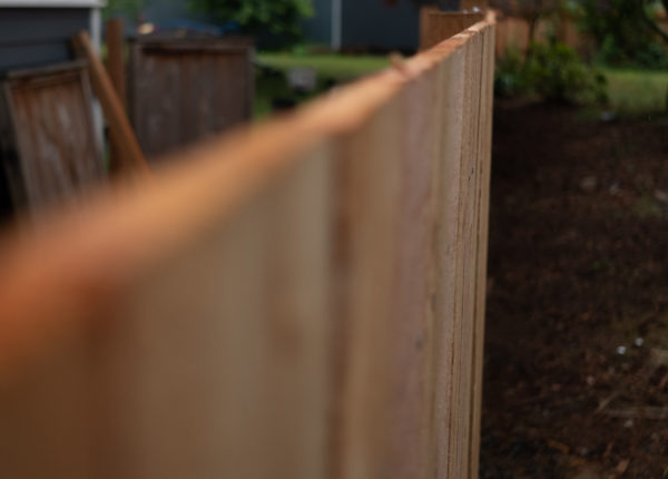 The top of the finished fence, running down to the end of the yard